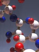 sacharidy-v- krmivech- 150x