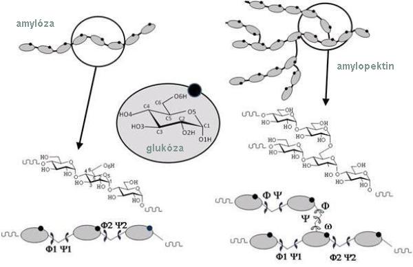 sacharidy-v-krmivech-2